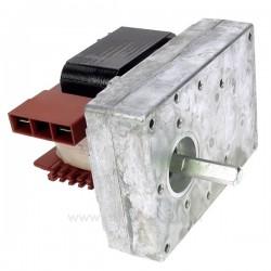 Motoréducteur de vis sans fin de poêle à pellets 1,5 tour/minute , reference 231512