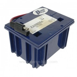 Batterie acide gélifié 12V 2,5A Briggs & Stratton, reference 9983205