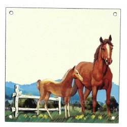 Plaque emaillee cheval Cadeaux - Décoration CL46302001, reference CL46302001