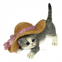 Chaton chapeau