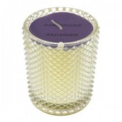 Bougie parfumée Jasmin sauvage Point à la ligne, reference CL31000046