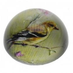 Sulfure oiseau fond jaune , reference CL41000037